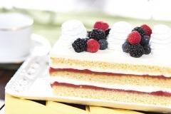rectangular-cake